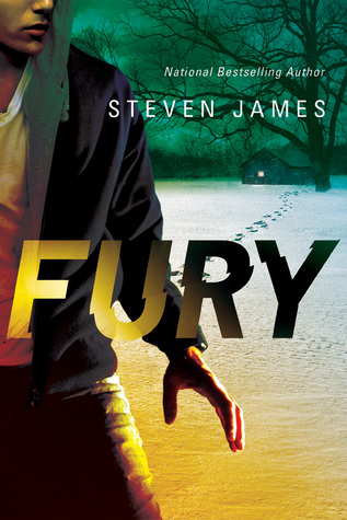 Review: Fury by Steven James