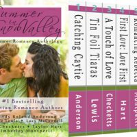 Blog Tour: Summer in Snow Valley – Review