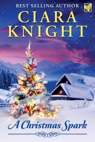 Meet the Author: Ciara Knight